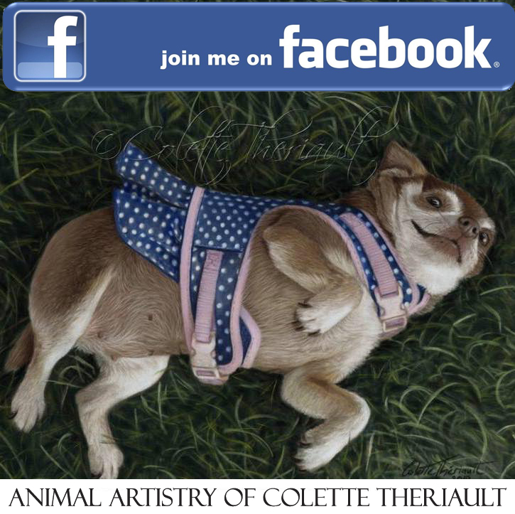 Animal Artistry Facebook Colette Theriault