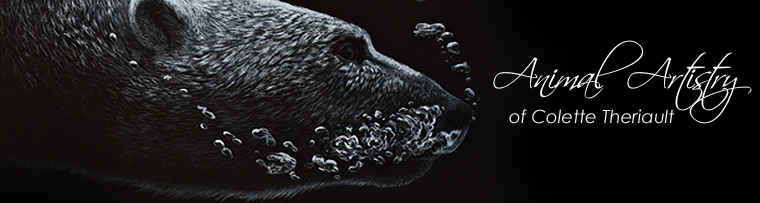 Pet portraits, wildlife art, animal art, paintings and drawings by Colette Theriault