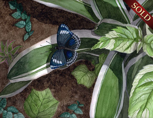 Butterfly Wildlife Painting