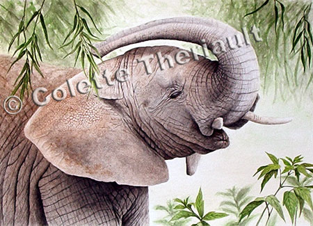 African Elephant Wildlife Painting