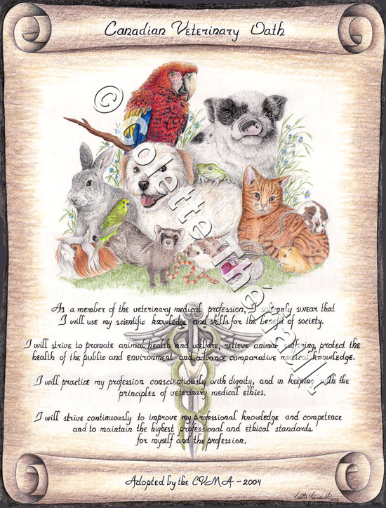 Canadian Veterinary Oath Artwork