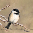 winter chickadee painting