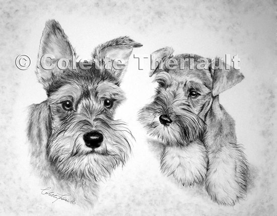 Dog Pet Portrait Artist