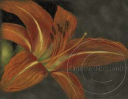 step 1 daylily flower painting