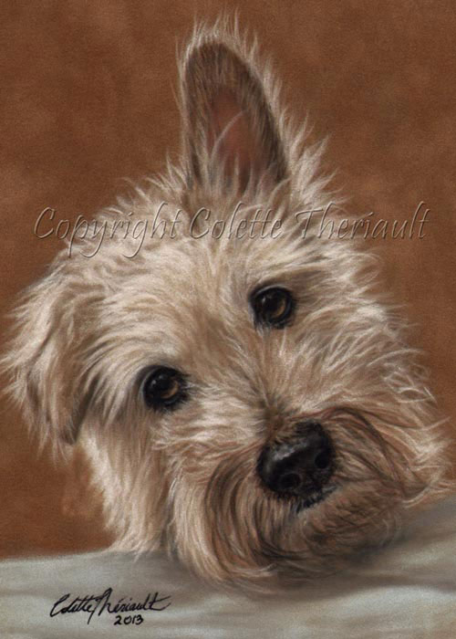 wire haired jack russell terrier portrait painting in pastel
