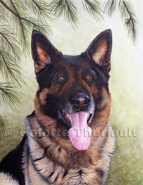 German Shepherd Painting-Pet Portraits