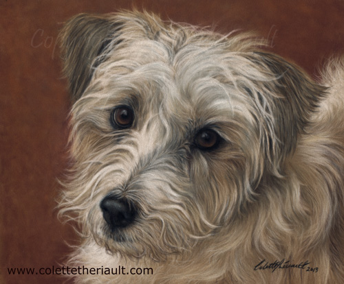 Portrait of Wire Haired Jack Russell Painting in Pastel