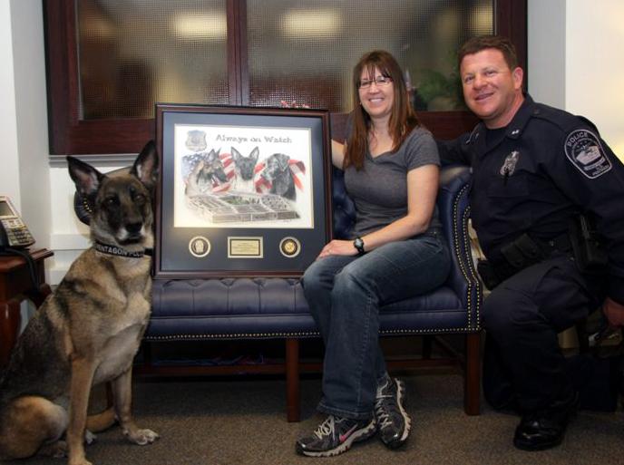 United States Pentagon Police Explosive Detection k9 Unit Dog ...