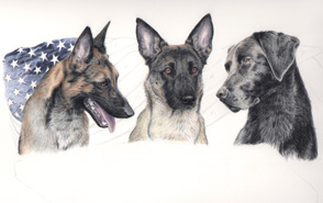 step 12 of police k9 artwork
