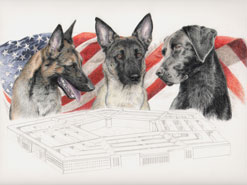 step 13 of police k9 artwork