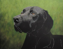 pointer pastel painting step 3