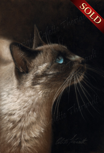 Siamese Cat Painting in pastel by Colette Theriault