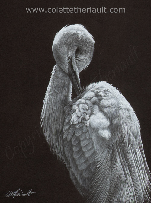 Great egret pastel painting