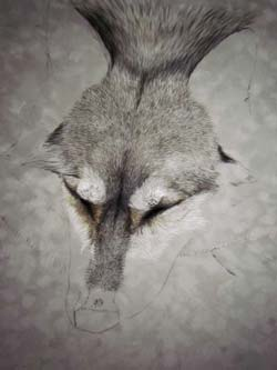 step 2 wolf painting