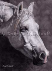 Horse Pet Portraits paintings